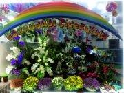 https://resim.firmarehberim.com/k/resimler/orjinal/uyeler23771508850939.jpgGökkuşağı Çiçekçilik