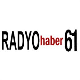 HABER 61