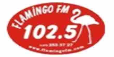 Flamingo FM