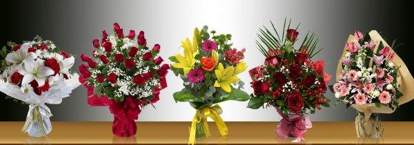 Sarmaşık Video Ve Çiçekçilik - Hatay Antakya