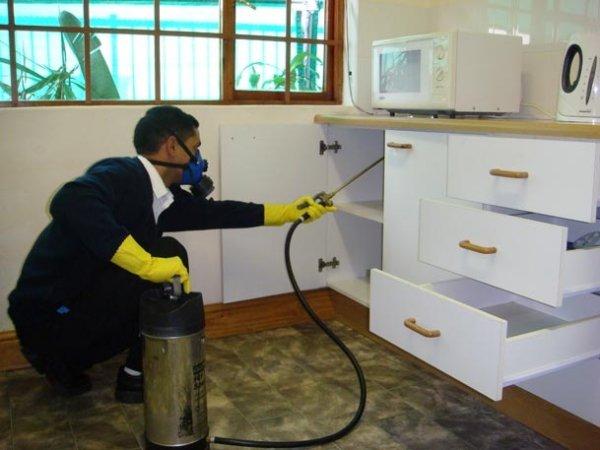 Kardelen Temizlik Ev Ofis İnşaat Sonrası